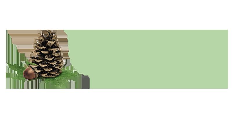 Molpus Woodland Group